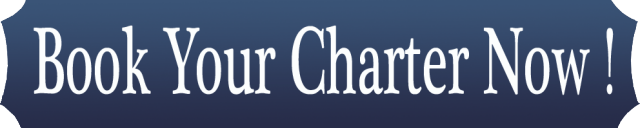 Book Your Charter Date Now! FL Sportfishing Charters - Stuart Florida